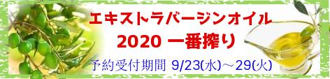 2020 exv oil
